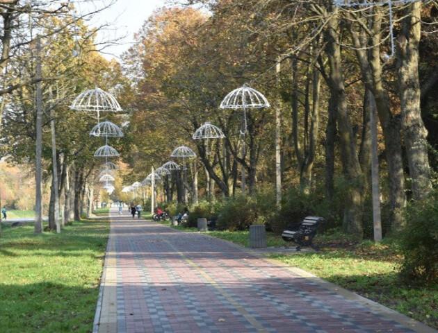 У Луцьку власник літнього майданчика зробив каналізацію в парку