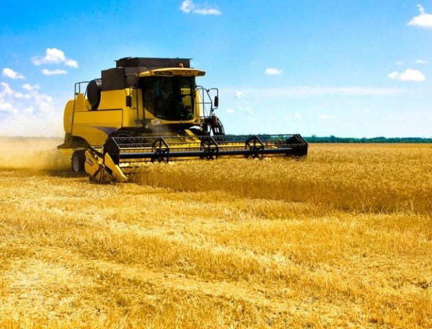 На Волині фермери незаконно захопили 70 гектарів землі