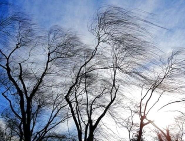 Синоптики попереджають про сильний вітер у західних областях