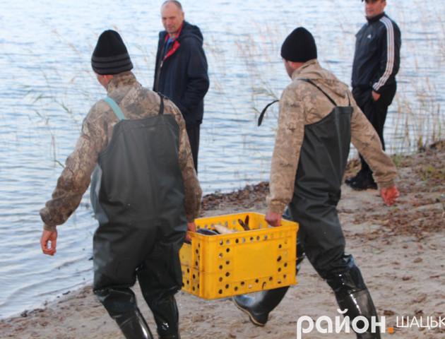 У волинське озеро випустили майже тонну риби. ФОТО