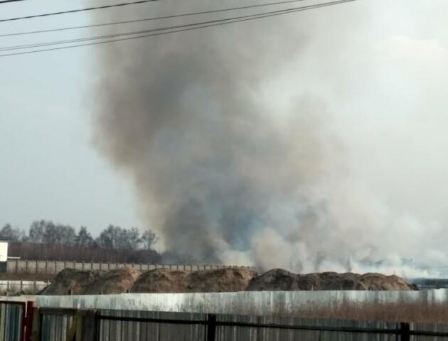 Епідемія вогню: горить трава у Тарасовому під Луцьком