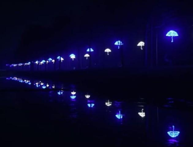 Красивий, але темний, - популярний ведучий розкритикував центральний парк Луцька. ВІДЕО