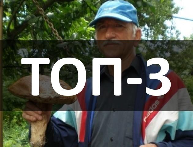 Відпочинок моделі на Світязі, гігантський гриб та знайдена дитина: ТОП-3 за 3 липня