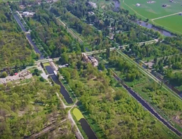 Луцький парк заростає кропивою. ВІДЕО