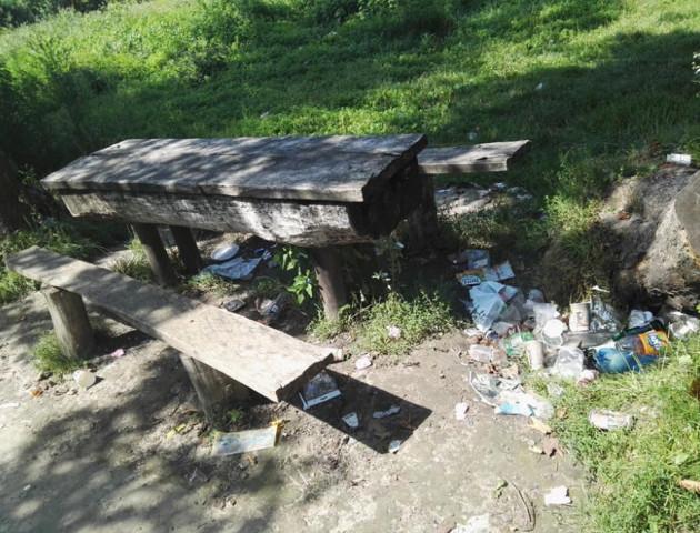 «Гидко навіть ходити, не те що відпочивати»: у місті на Волині закидали сміттям парк. ФОТО