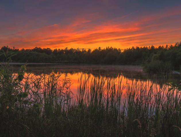 Грає безліччю барв: захід сонця на волинському озері. ФОТО