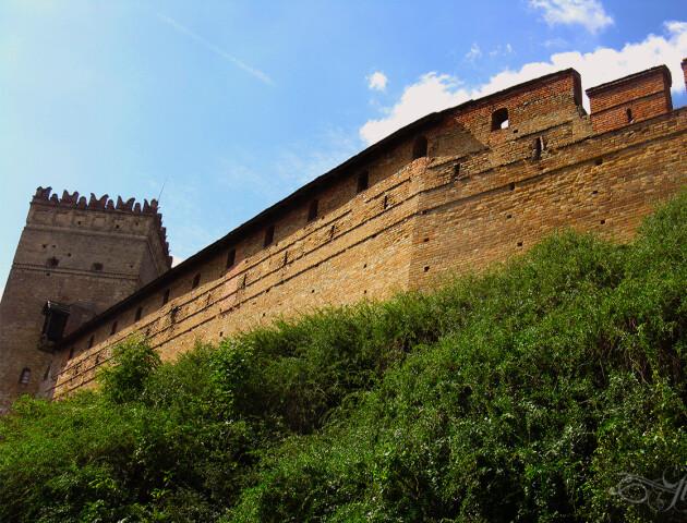 Бур'яни на валах Луцького замку знищити можна, але за великі гроші, – директор заповідника