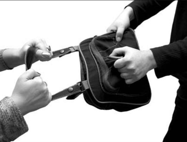 Вирвав із рук сумочку і зник: на Волині рецидивіст пограбував жінку