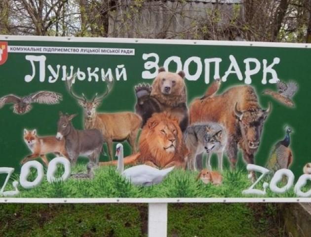 Луцький зоопарк хочуть розширити. ВІДЕО