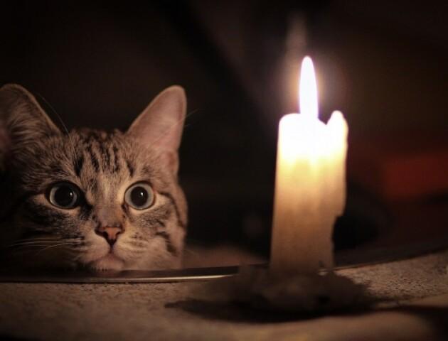 У Луцьку тимчасово відключать світло. Де?