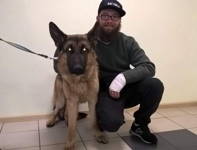 «Дива трапляються»: напередодні Святого Миколая киянин знайшов собаку, яку шукав рік