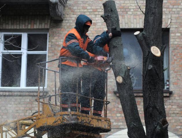 Ковелі чоловік випав з крана, коли обрізав дерева