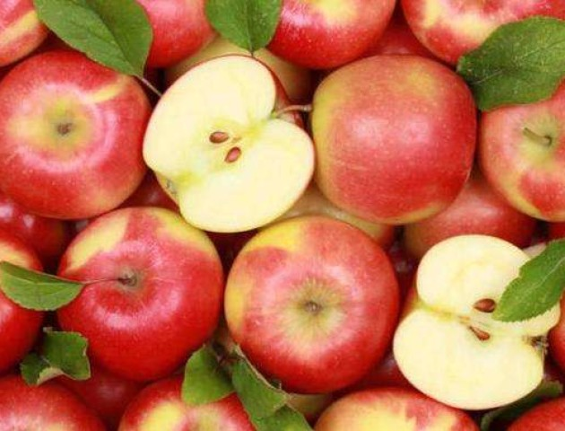На Волині – надзвичайний урожай яблук. ВІДЕО