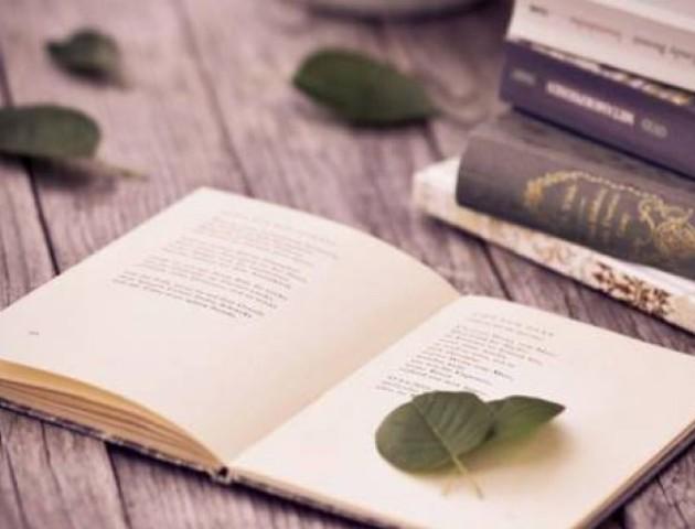 Лучан кличуть на поетичні читання й танці