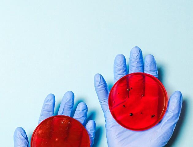 «Святкова» статистика пандемії: 11 316 одужали, 8 997 захворіли