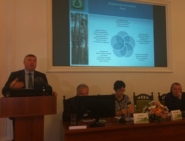 В Україні хочуть створити Фонд розвитку лісового господарства