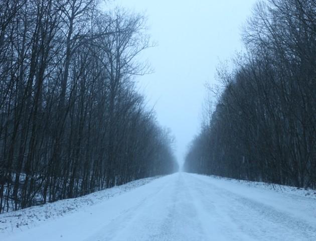 Хмарно та сніг: погода у  Луцьку та області на 12 грудня