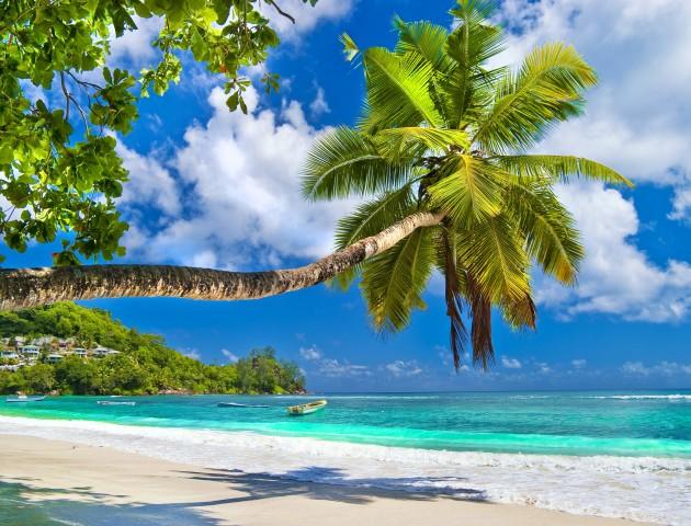 Перший відпочиває: фантастична подорож у рай – Мальдіви, Сейшели та Маврикій