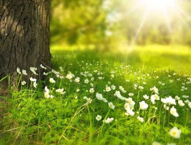 «Ніяких опадів та справжнє тепло», - синоптик про погоду в Україні