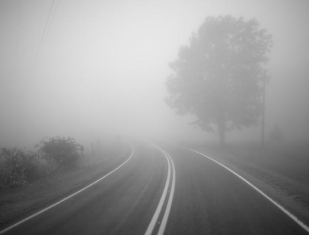 Туманний ранок у Луцьку: перші наслідки. ВІДЕО