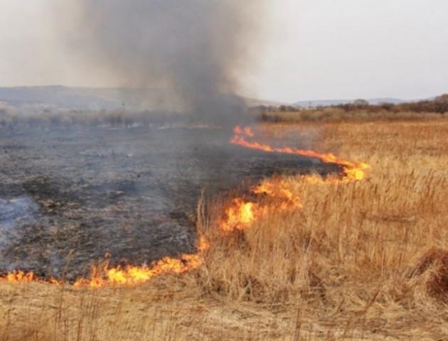 Волинян попереджають про високий ризик виникнення пожеж в області