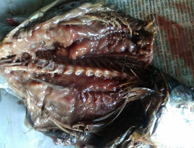 Лучанка купила гнилу рибу в одному із супермаркетів. ФОТО