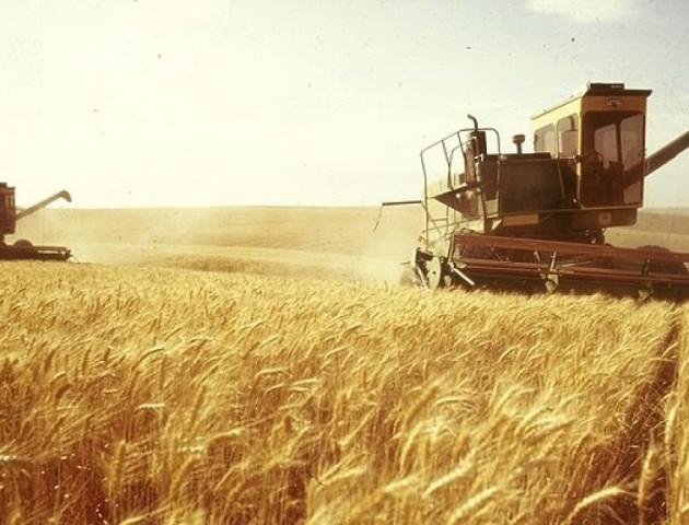 ПриватБанк допоможе аграріям отримувати компенсації за п'ятьма державними програмами
