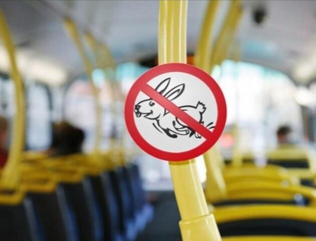 Як у луцьких маршрутках і тролейбусах шукатимуть «зайців»
