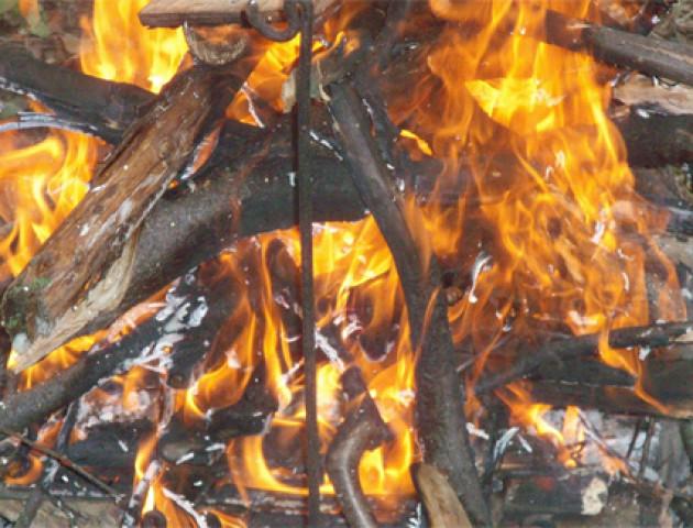 На Волині оголосили найвищий клас пожежної небезпеки