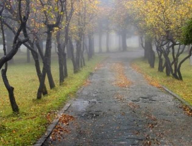 Якою буде погода у Луцьку та області 9 жовтня