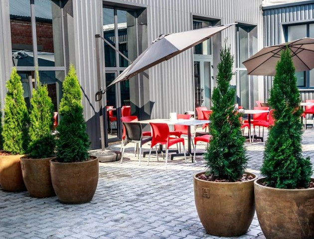 На території комплексу WEST AUTO HUB поблизу Луцька відкрили Ring Cafe. ФОТО