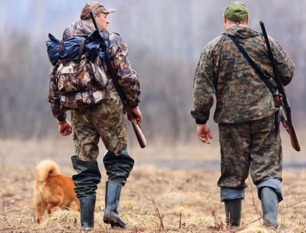 Мисливський сезон на Волині: коли і на кого можна полювати