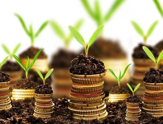 Волинські землевласники поповнили бюджет майже на 59 мільйонів гривень