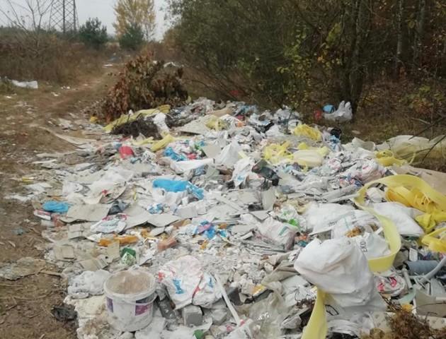 «Обурює таке «свинство»: ліс поблизу Луцька закидали сміттям. ФОТО