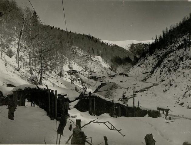 Вражаючі фото зимових Карпат 100 років тому