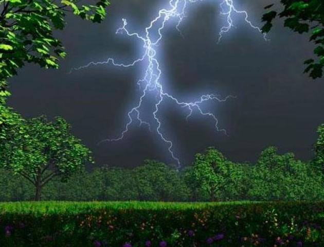 Якою буде погода у Луцьку та області 1 серпня