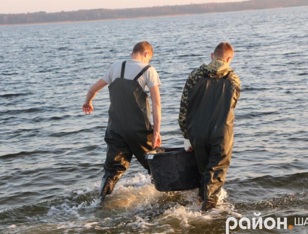 В озера на Волині випустили 940 кілограмів риби. ФОТО