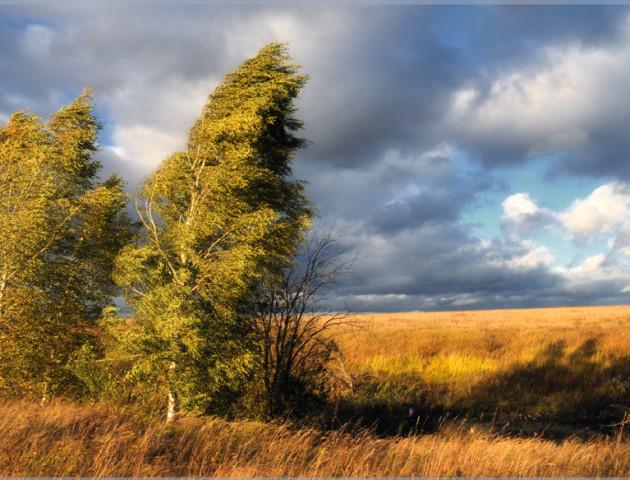 Якою буде погода у Луцьку та області 7 вересня