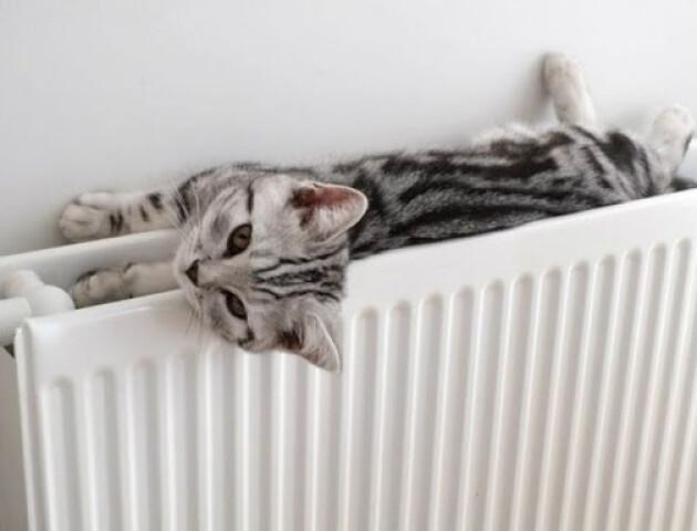 «Луцьктепло» може завершити опалювальний сезон незалежно від погоди