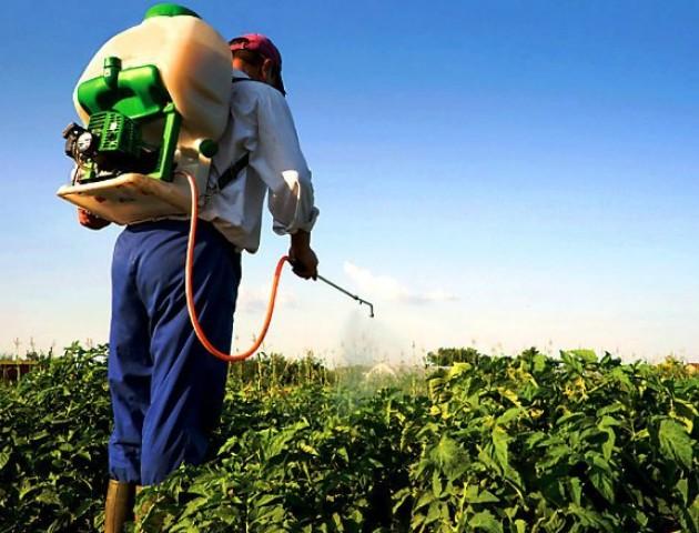 Волиняни не дотримуються правил використання пестицидів