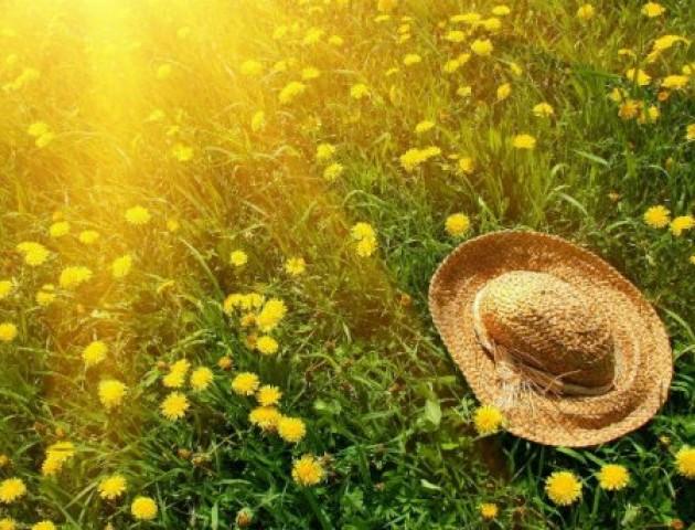 Найспекотніше за останні десятиліття літо прогнозують в Україні