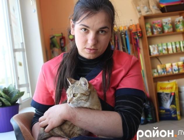 «Залізний би зламався»: просять допомогти луцькій ветеринарці-волонтерці
