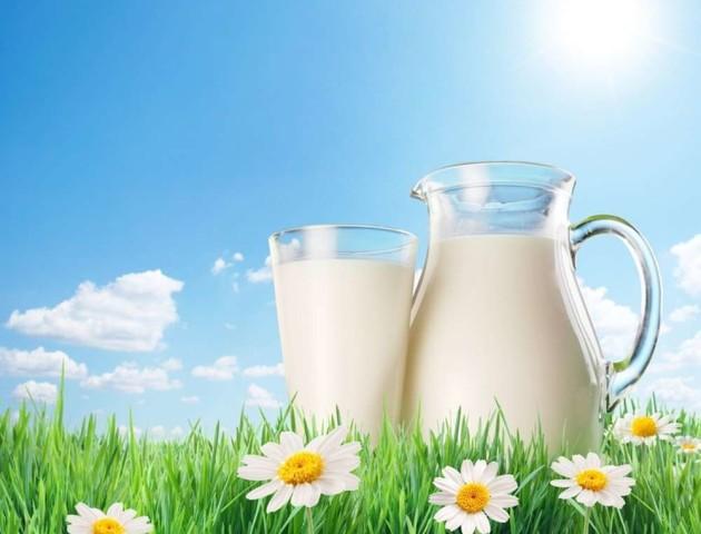 Домашні продукти: чим може бути небезпечне куплене на ринках молоко