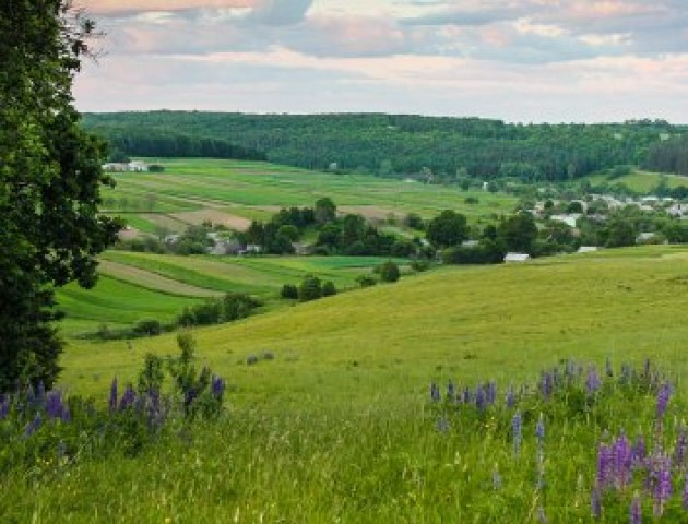 На Волині створять Національний природній парк