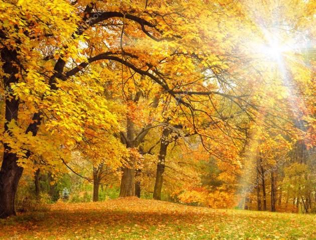 Якою буде погода у Луцьку та області на вихідних, 6-7 жовтня