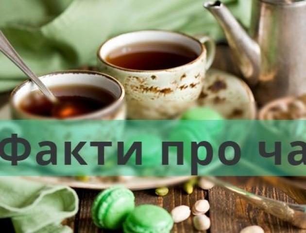 НадзвиЧАЙНО: 48 фактів про чай, яких ви раніше не знали