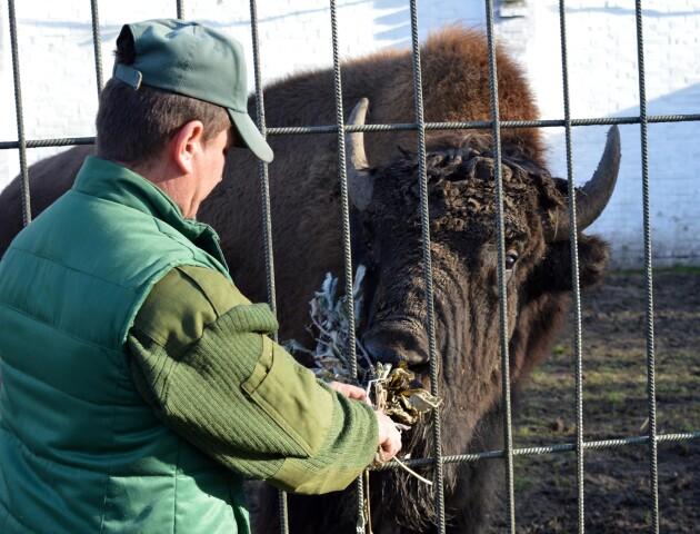 Волинські лісівники передали тонну ласощів для мешканців Луцького зоопарку