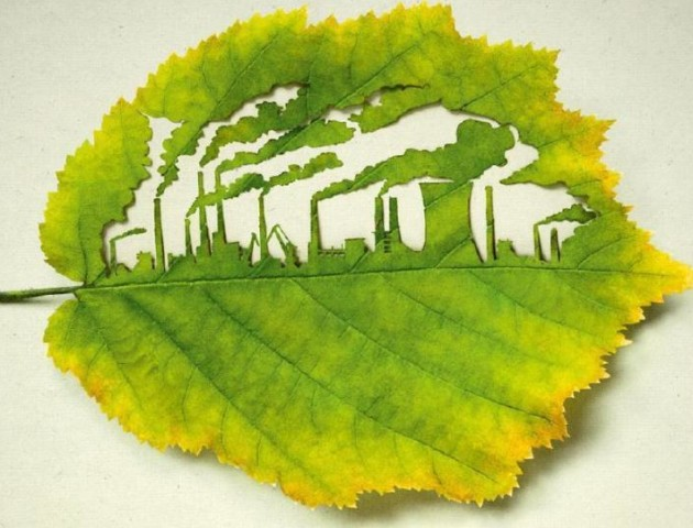 У Луцьку розказали що таке «зелена» економіка. ВІДЕО