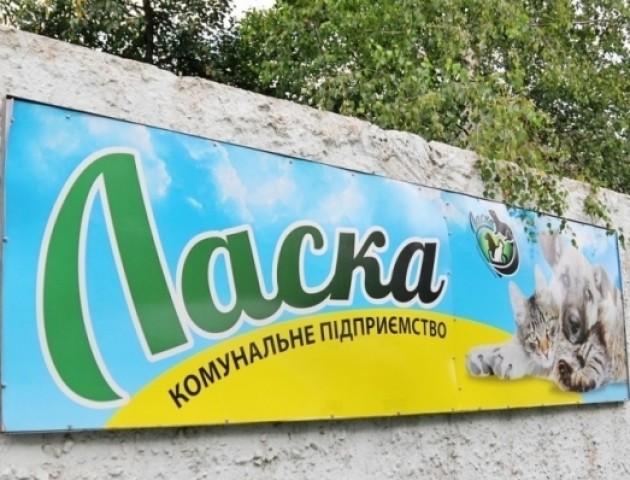 Призначили нового директора КП «Ласка»