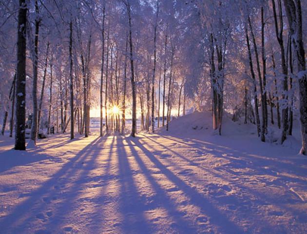Якою буде погода у Луцьку та області 11 грудня
